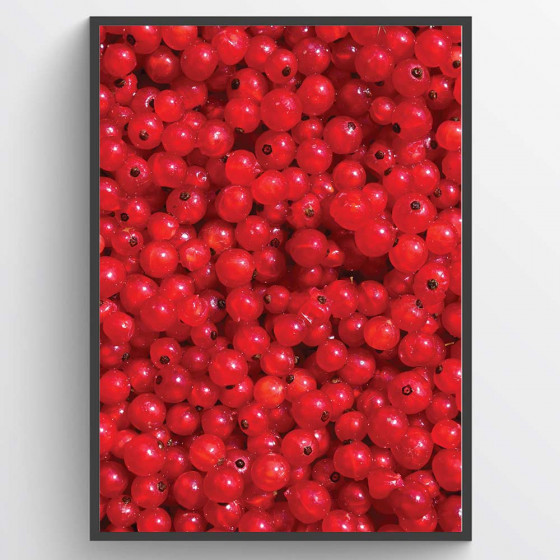 #1 Red berries poster wallsticker