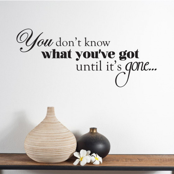 You don't know what you've got wallsticker