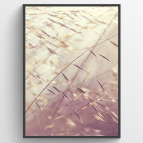 Oats - poster wallsticker