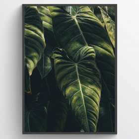 Leaves #2 - poster wallsticker