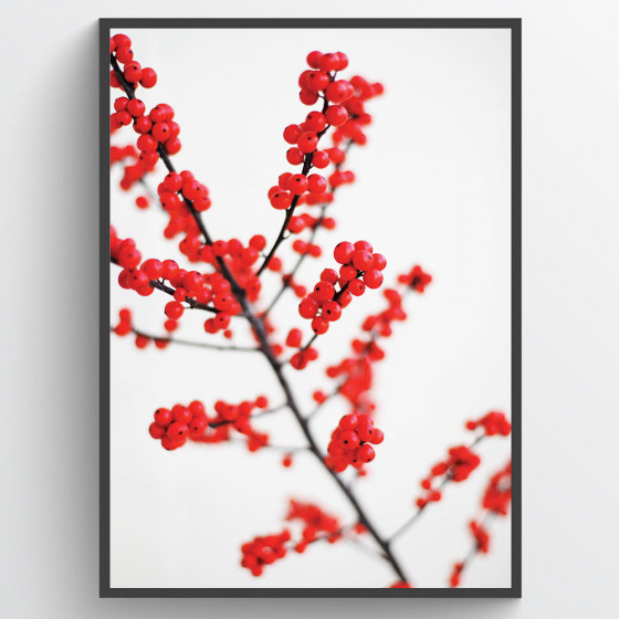 #2 Red berries poster wallsticker
