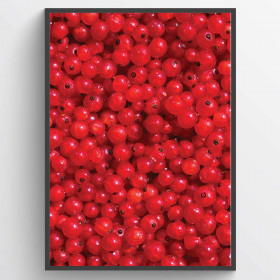 #1 Red berries - poster wallsticker